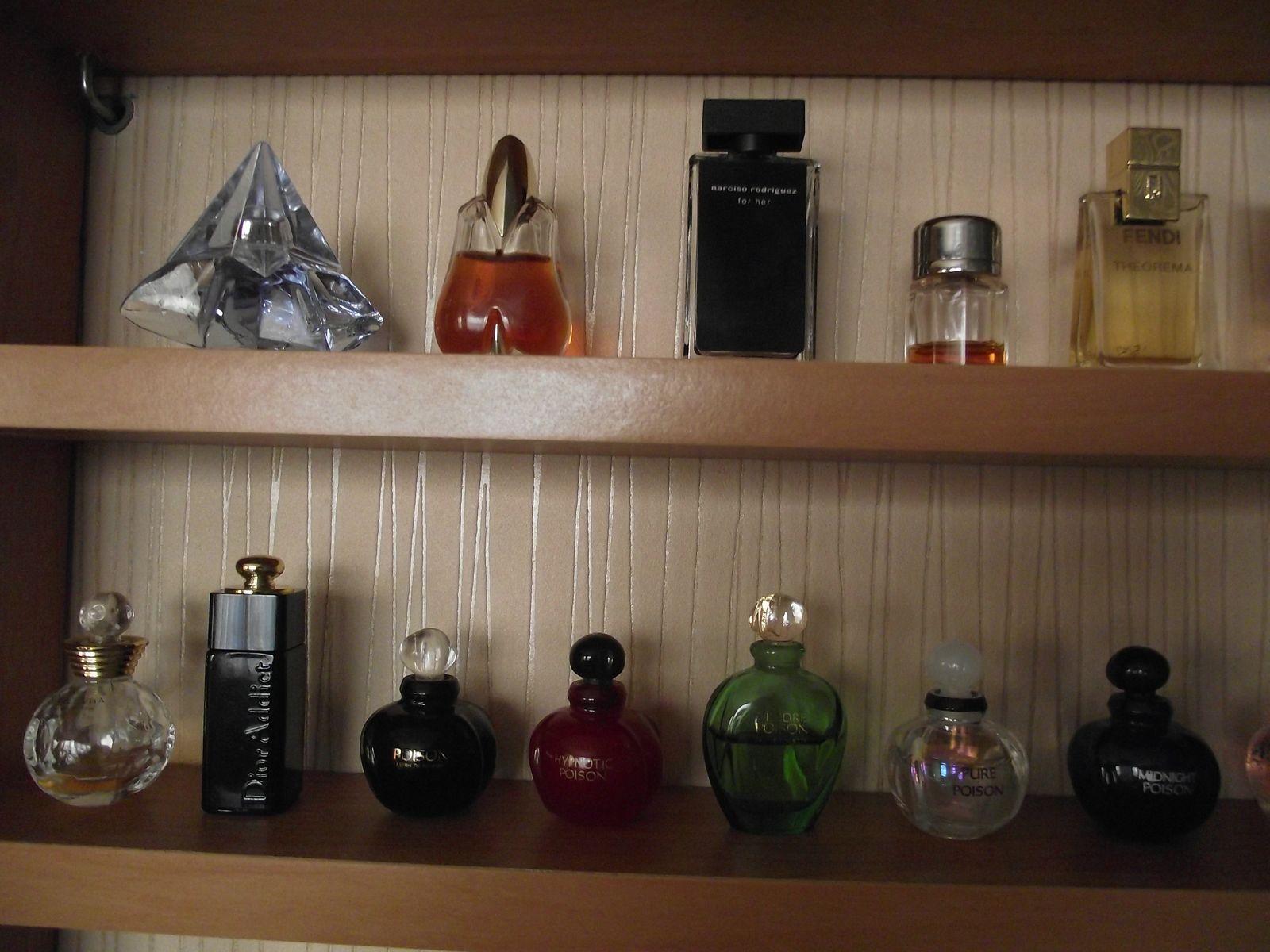 Kolekcja perfum Sylwii 21