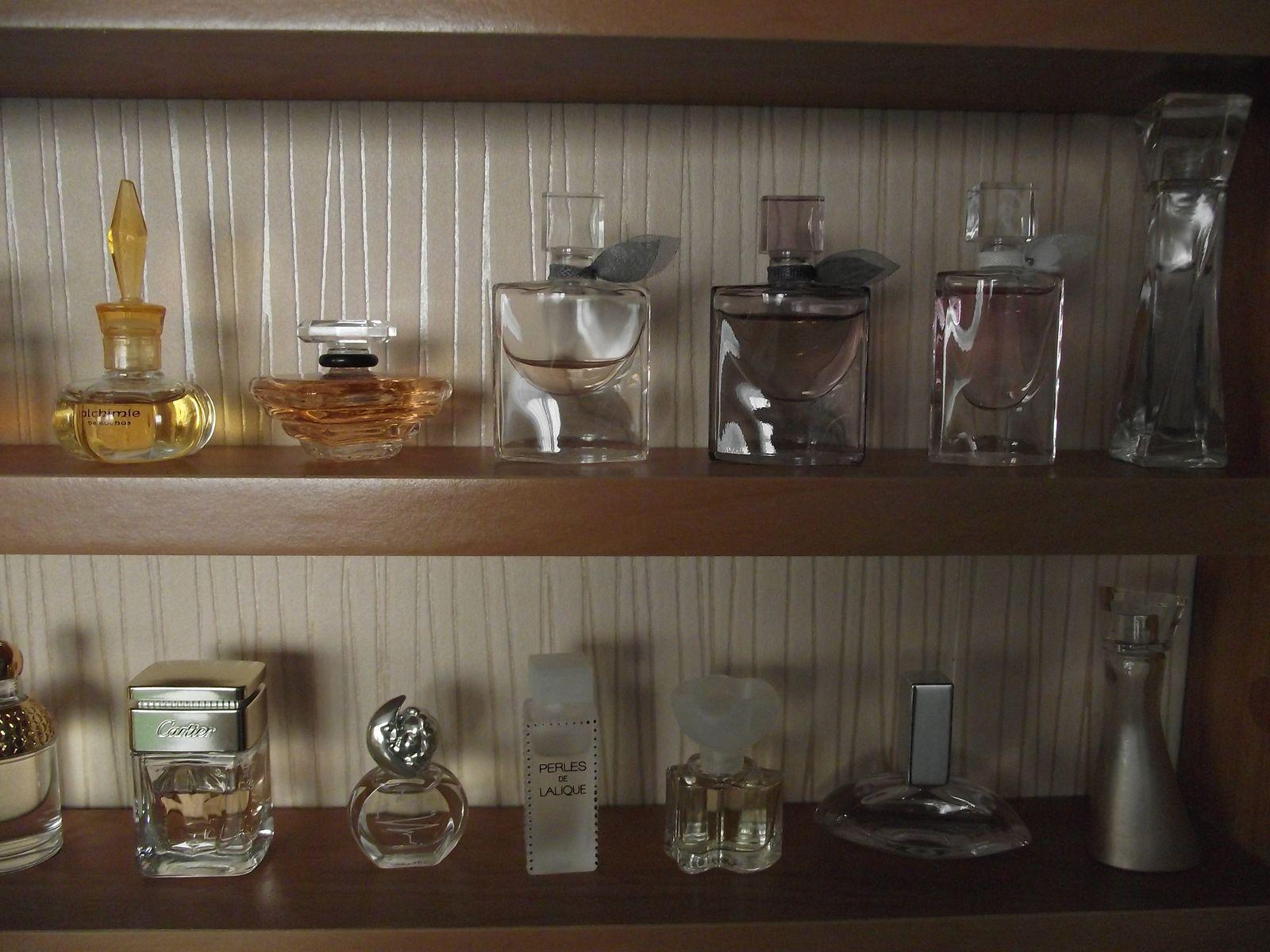 Kolekcja perfum Sylwii 24