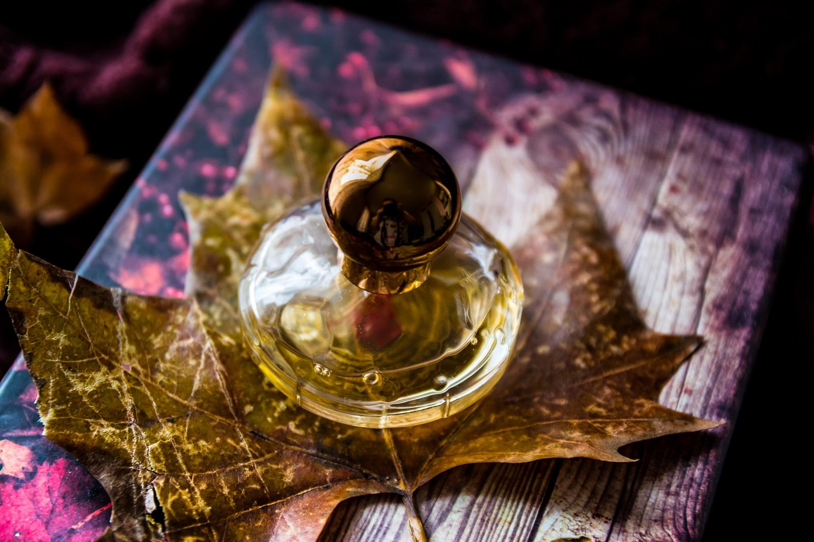 kolekcja-perfum-dominiki-19