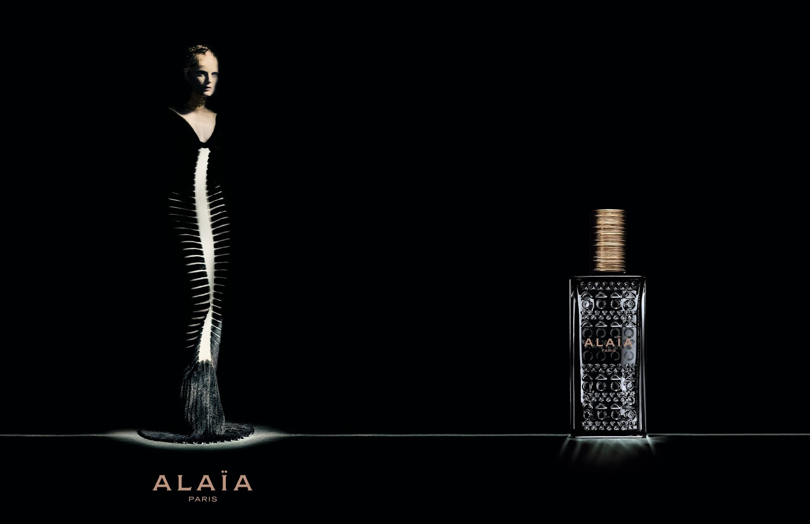 Plakt reklamowy Alaia Paris