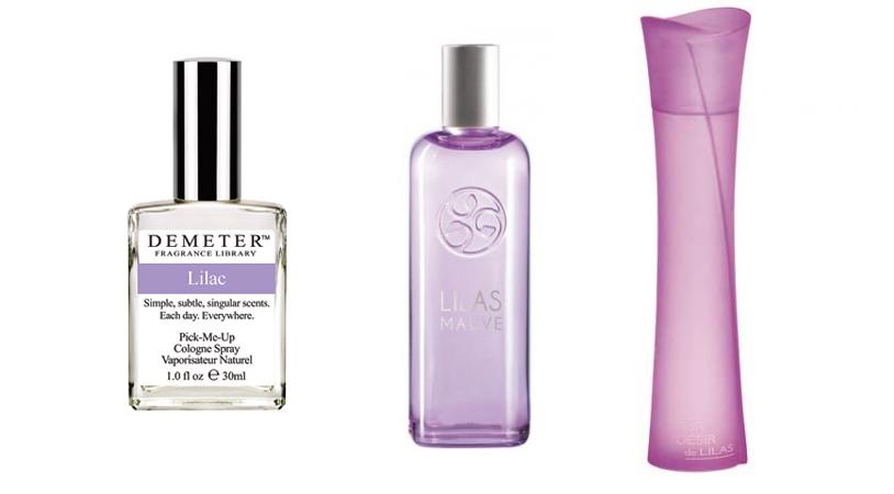 Perfumy o zapachu bzu • blog o perfumach Pachnące Historie