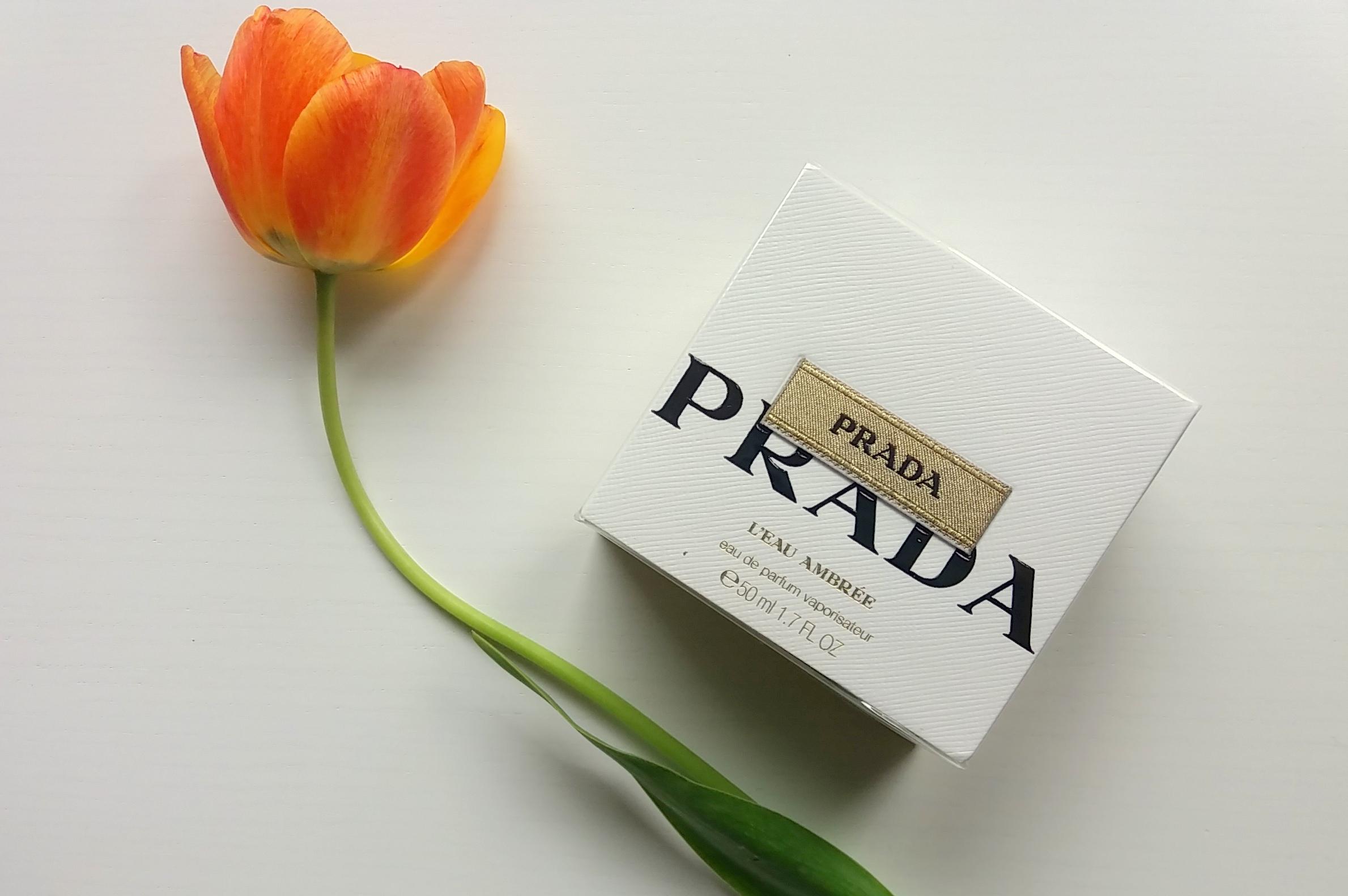 prada-porzadki-w-kolekcji-perfum