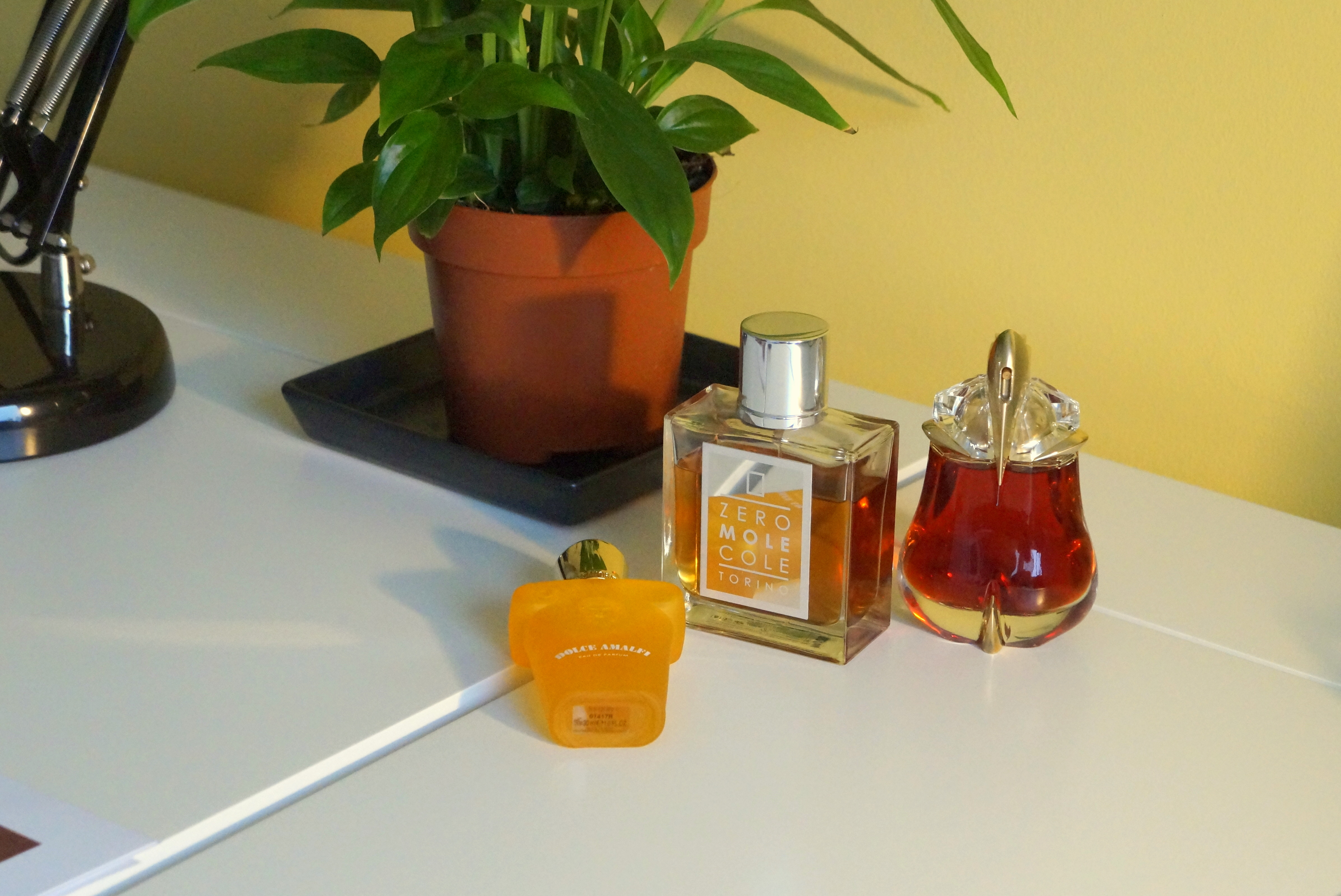 najtrwalsze perfumy_edpholiczka_blog o perfumach