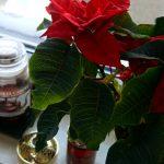 slow_grudzien_christmas